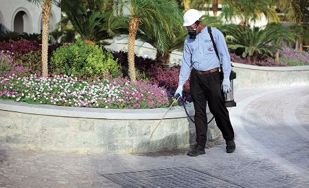 Pest Control & Fumigation